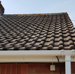 Roof ready for soft wash solution