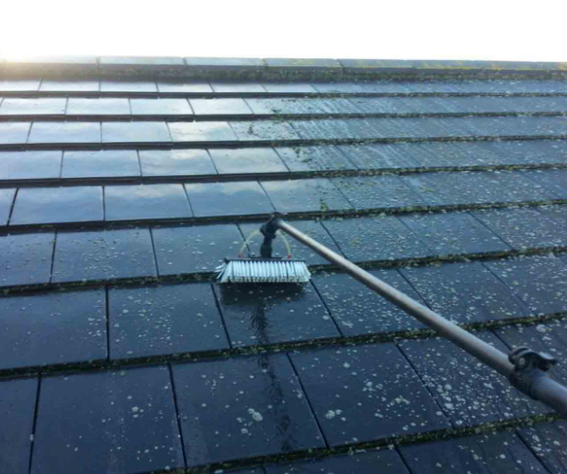 applying soft wash solution to roof.png