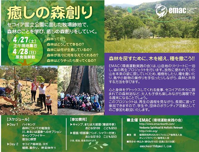癒しの森ポスター2019.jpg