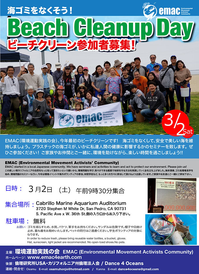 Mar 2 19 Beach Clean Poster .jpg