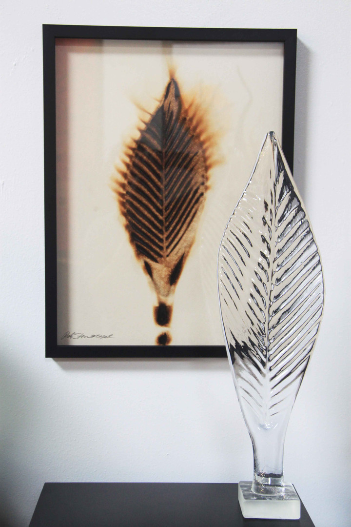 Rob Stern, Glass Leaf