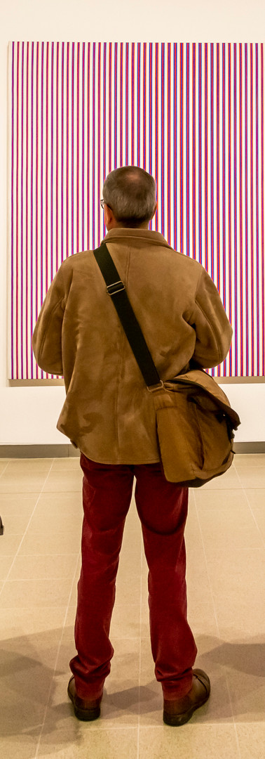 bridget riley (1 of 16).jpg