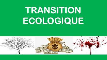 transition eco.jpg