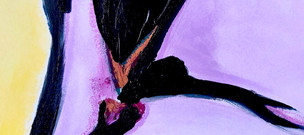 Fragment (purple) 2020 Acrylic on canvas with Satin gloss, with oil pastel 100 x 2400cm