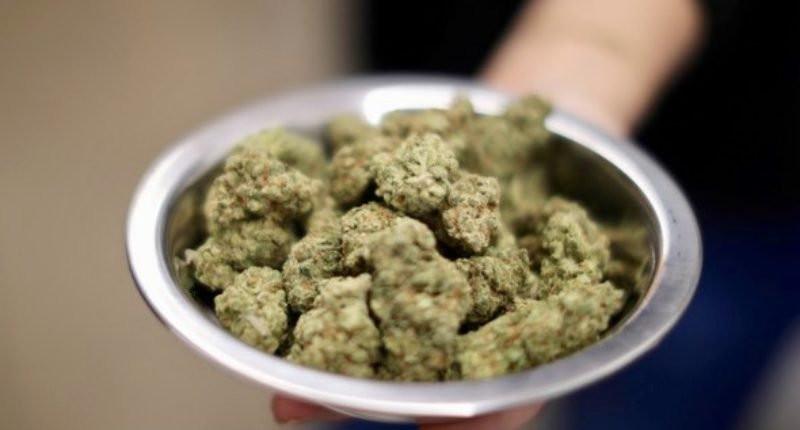 Cannabis In A Bowl