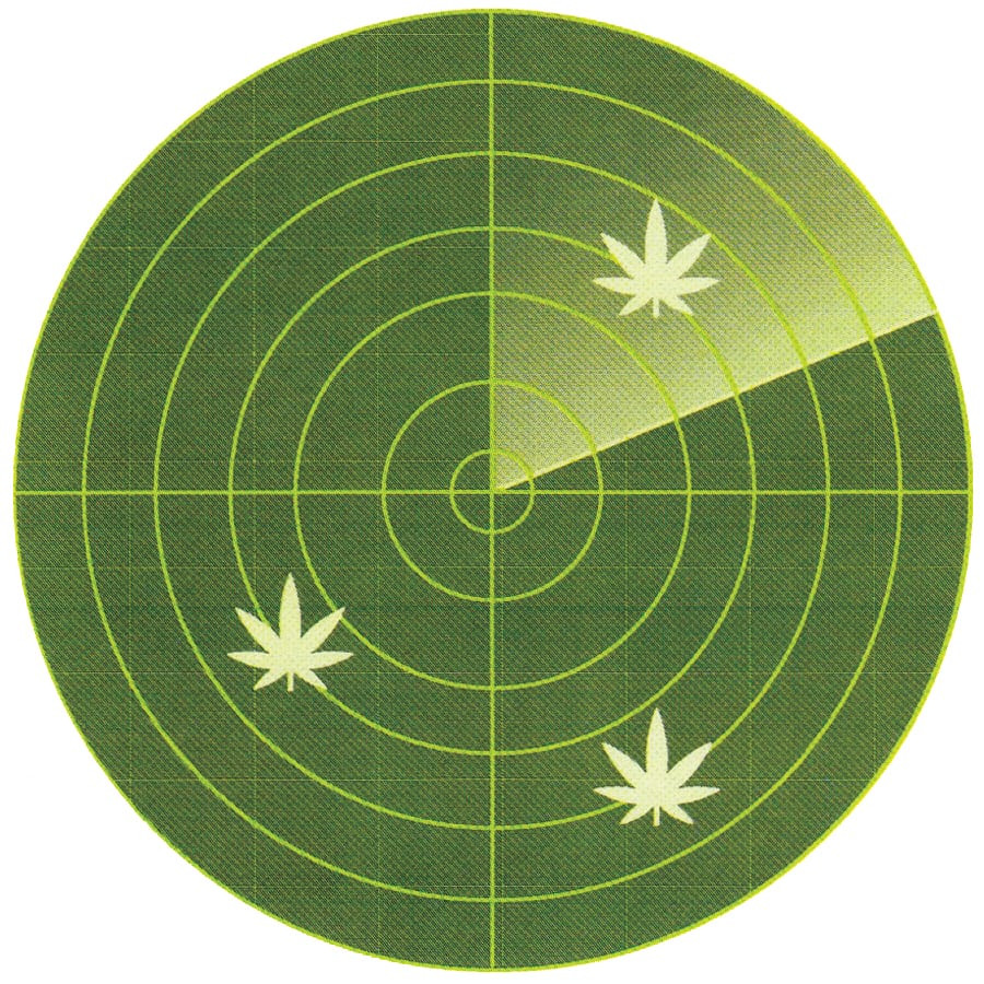 Cannabis Real Estate Loans