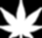 Cannabis Real Estate California