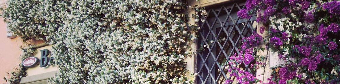 Trastevere com flores