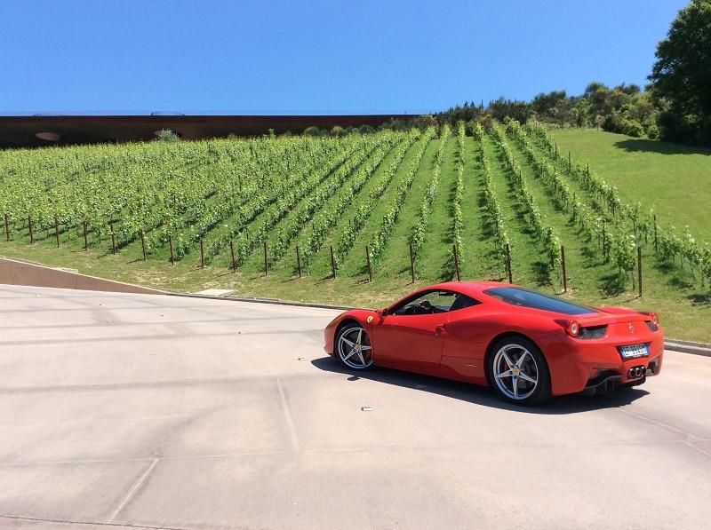 Pilotando a Ferrari pelos vinhedos do Chianti