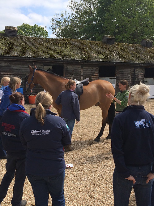 FULL Payment: Saddle Fitting CPD 23rd Sept, 2021