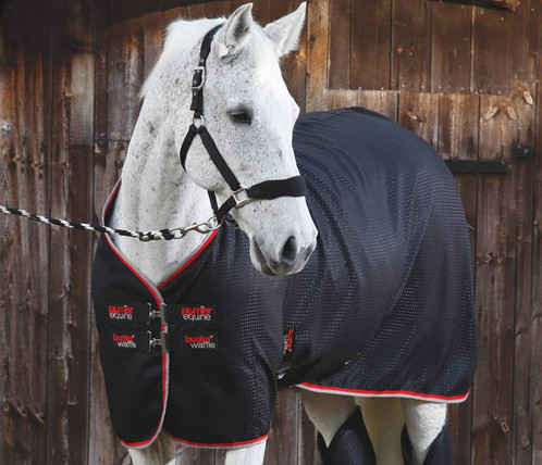 A Stylish Lightweight Horse Cooler Rug With An Advanced Fabric Weave Construction Which Helps Quickly Wick Away Moisture From Your S Coat