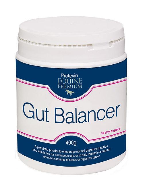 Protein Gut Balancer