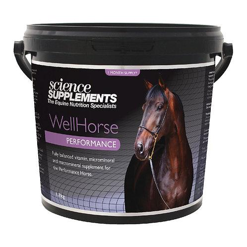 WellHorse Performance 1.4kg - Horse Feed Balancer