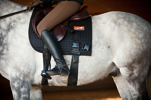 Equiband, Equicore, EquiConcept, Core Training Aid