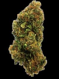 transparent-marijuana-kush-1.png