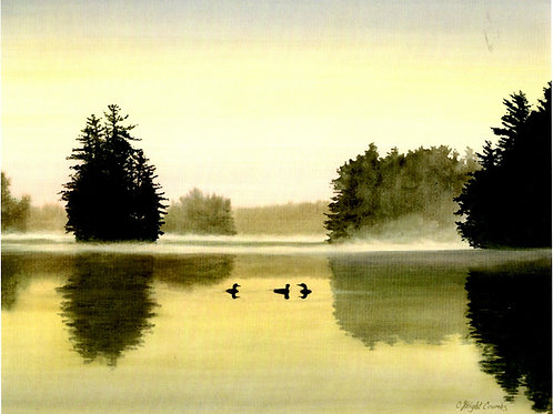 Three Loons on the Lake