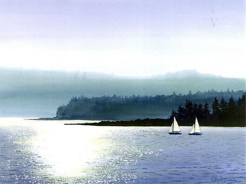 Sunny Day Sailing