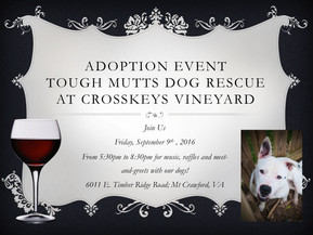 ADOPTION EVENT!