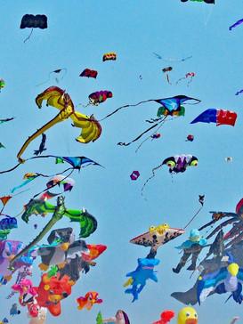 636431798618130406-1012-Kites-lots-of-em