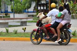 Day in Puerto Maldonado