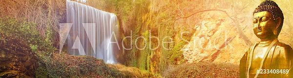 AdobeStock_233408489_Preview.jpeg