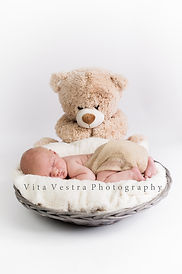 Newborn and teddy basket professional baby photos cheltenham, Gloucestershire