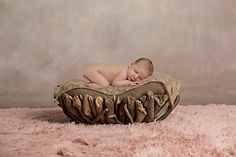 newborn baby, girl baby, posed, photo shoot, baby girl, professional photography