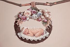 Newborn photography, digital backdrop, pink hammock photography