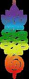 Logo multicolor V4 pour wixx fond transp