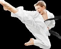 karate_PNG97.png