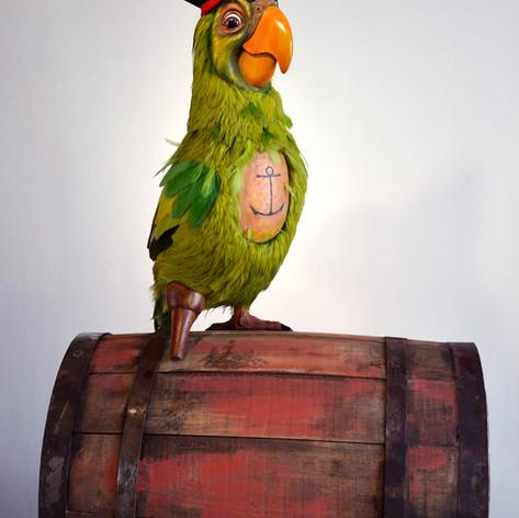K&J-Parrot 1.jpg