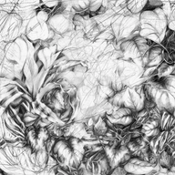 Tapestry of Life - Graphite