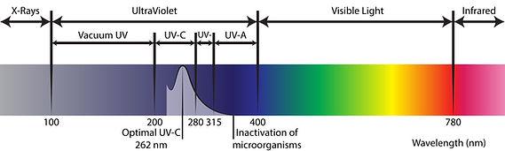 Spectrum-01.jpg