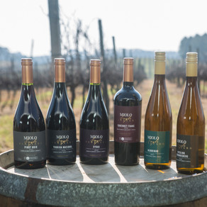 MIOLO SINGLE VINEYARD. Os vinhos que nascem da terra e brotam de vinhedos únicos