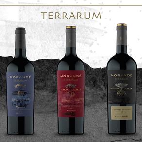 Viña Morandé lança linha Terrarum, vinhos premium exclusivos para restaurantes e lojas especializada