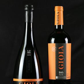 Linha GIOIA, com produtos exclusivos de Indicações Geográficas, é nova marca da Vinícola Aurora