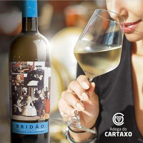 Único Master of Wine de língua portuguesa faz live com branco português de quatro uvas.