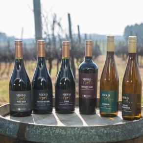 MIOLO SINGLE VINEYARD Os vinhos que nascem da terra e brotam de vinhedos únicos