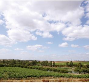 Brasília recebe grande degustação de vinhos do Alentejo.