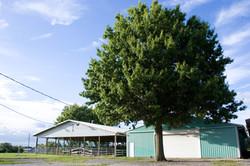 Saline Co Fairgrounds_0056