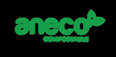 AnEco logo.png