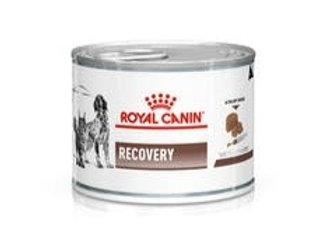 ROYAL CANIN - DOG GASTROINTESTINAL RECOVERY ULTRA SOFT MOUSE