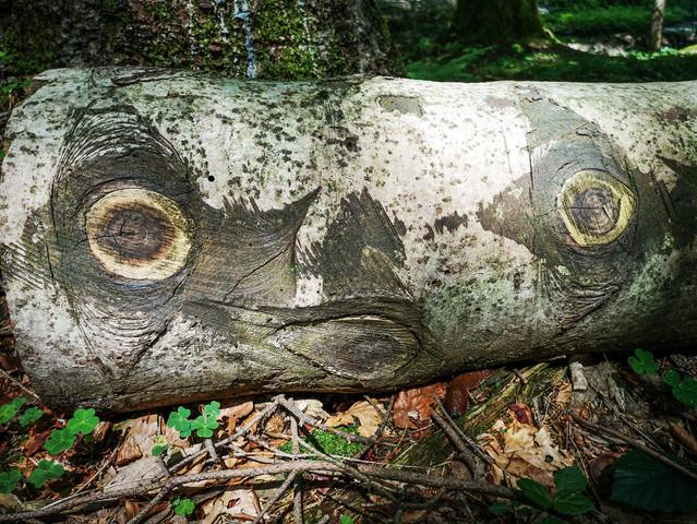 """Natural Art: """"Baba Puh"""""""