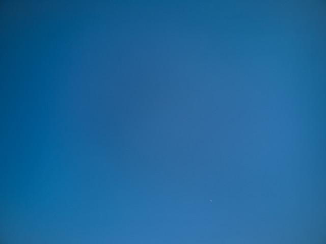 "Natural Art: ""Sky So Blue"""