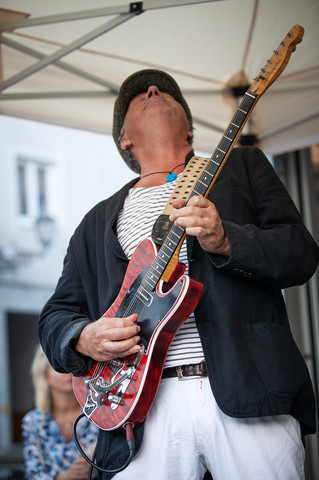 Peter Schneider, guitars