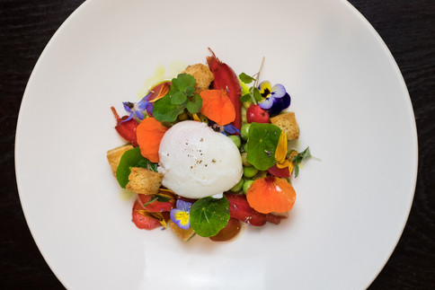 kitchen garden vegetables / microherb / soft poached egg
