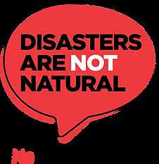 NND Logo.png