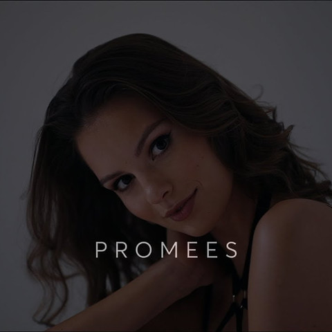 PROMEES