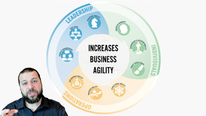 Domains of Business Agility