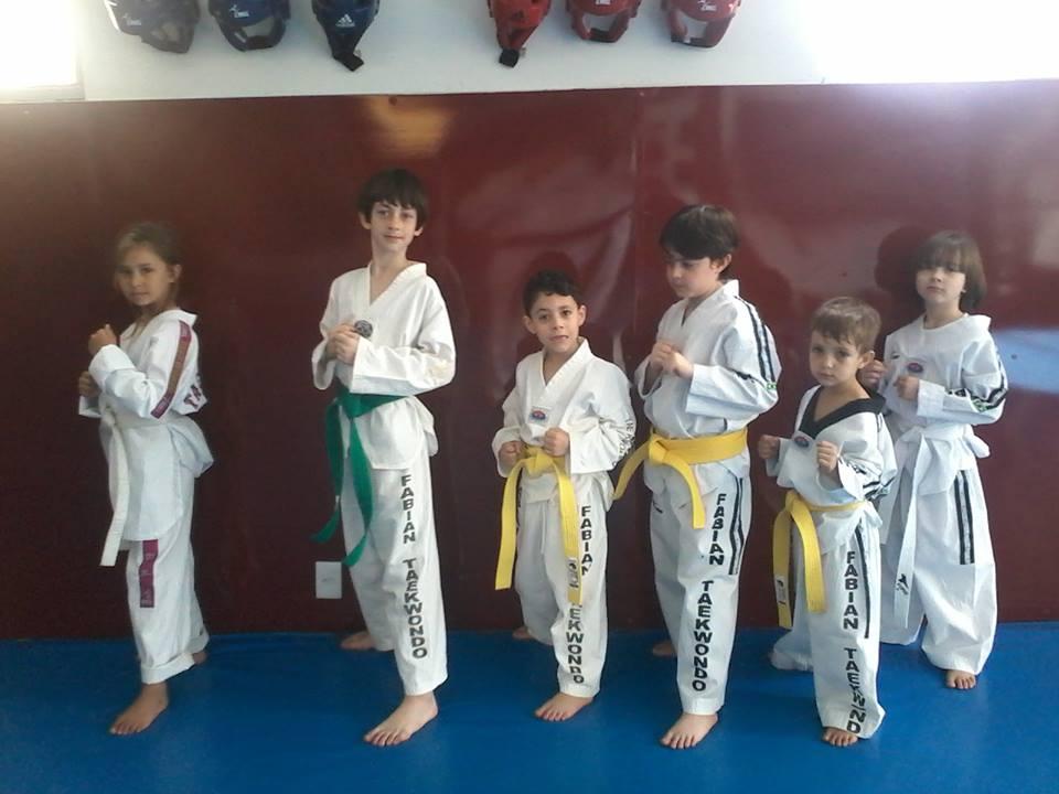 Taekwondo infantil zona sul